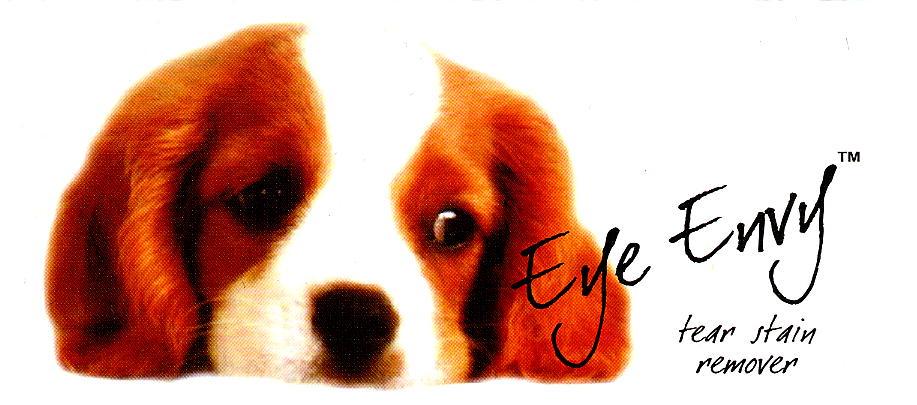 eyeenvy_3.jpg